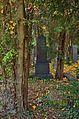 047 - Wien Zentralfriedhof 2015 (22935134390).jpg