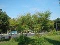 08645jfIntramuros Anda Circle Bonifacio Drive Port Area Manilafvf 41.jpg