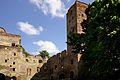 1051viki Ząbkowice Śląskie - ruiny zamku. Foto Barbara Maliszewska.jpg