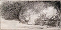 1640 Rembrandt Der schlafende Hund anagoria.JPG