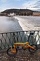 18-02-01-Birdy-in-Prag-RalfR RRK0996.jpg