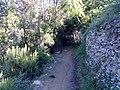 19017 Riomaggiore, Province of La Spezia, Italy - panoramio (4).jpg