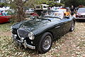 1955 Austin Healey 100M BN2 (12080996023).jpg