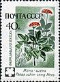 1960 CPA 2498.jpg