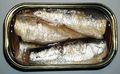 2006 sardines can open top.jpg