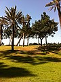 2011-02-23-Golf-Soleil-15.JPG