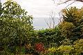 2011-03-05 03-13 Madeira 005 Casa Papagaio (5542530461).jpg