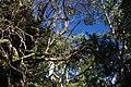 2012-10-26 13-14-34 Pentax JH (49281851513).jpg