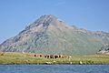 2013-08-05 07-41-02 Switzerland Kanton Graubünden Ospizio Bernina Bernina Hospiz.JPG