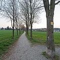 20140329181901 Neulengbach Allee 4806.jpg