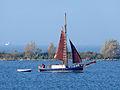 20141028 IJmeer met eilandje De Drost.jpg