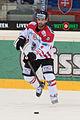 20150207 1830 Ice Hockey AUT SVK 9875.jpg