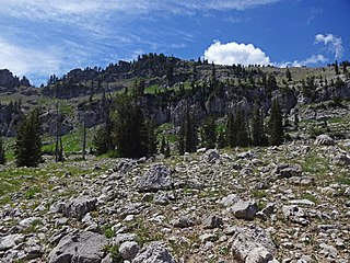 Naomi Peak mountain in the Bear River Range in Cache County, Utah, United States