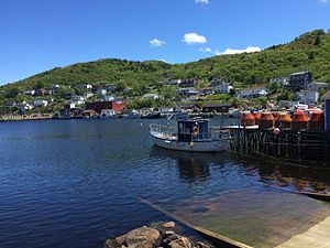 Petty Harbour-Maddox Cove - Summer Day in Petty Harbour.