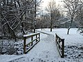 2017-12-10 08 05 59 View along a walking path on the morning after a wet snowfall in the Franklin Farm section of Oak Hill, Fairfax County, Virginia.jpg