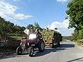 2433 Lobosh, Bulgaria - panoramio (4).jpg