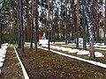 3503. Большая Ижора. Мемориальное воинское кладбище.jpg