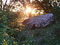 3 Colombe-lès-Vesoul dolmen de la pierre qui vire.JPG