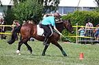 4ème manche du championnat suisse de Pony games 2013 - 25082013 - Laconnex 90.jpg
