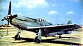 45th Tactical Reconnaissance Squadron RF-51 Mustang.jpg