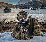 539 Assault Squadron performing a beach assault MOD 45159506.jpg