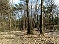 6741 Lunteren, Netherlands - panoramio.jpg