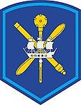 6th Air and Air Defense Forces Army Insignia 2010s.jpg