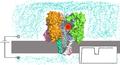 AHL-MoleculeAndIons.png