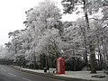 A Wintry Beacon Hill - geograph.org.uk - 1123056.jpg