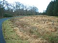 A bend in the woods - geograph.org.uk - 144970.jpg