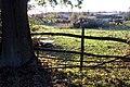 A rustic gate - geograph.org.uk - 597576.jpg
