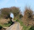 A serpentine lane - geograph.org.uk - 1215372.jpg