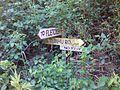 Abandoned Forest Signage.jpg