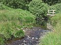 Afon Doethie Fawr and Footbridge, Ceredigion - geograph.org.uk - 515473.jpg