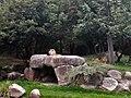 Afrikanische Löwen (Zoo Leipzig).jpg