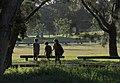 Afternoon light Centennial Park 002.jpg