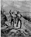 Aimard - Les Chasseurs d'abeilles, 1893, illust page 333.png