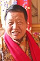 Akong Rinpoche in 2010.jpg