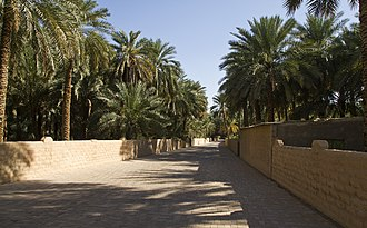 Oasis - Image: Al Ain Oasis, Al Mutawaa Abu Dhabi United Arab Emirates panoramio