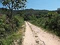 Alameda Cândido Brasil Moro - Palma - Santa Maria, foto 16 (sentido S-N).jpg - panoramio.jpg
