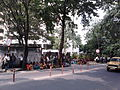Alipore Campus of University of Calcutta - Kolkata 2011-05-29 00327.jpg