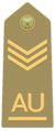 Allievo ufficiale capo scelto of the Italian Army.png