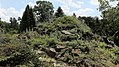 Alpinpflanzen im Botanischen Garten Berlin.jpg