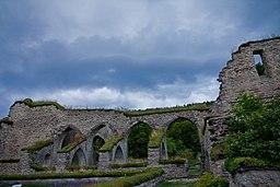 Alvastra klosterruin.jpg
