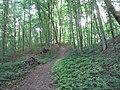Alytus, Lithuania - panoramio (16).jpg