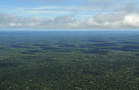 Aerial view of the Amazon Rainforest, near Manaus.