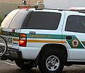 American police car 9-1-1.jpg