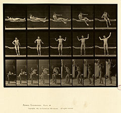 Animal locomotion. Plate 260 (Boston Public Library).jpg