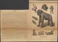 Anthropopithecus gorilla - 1876 - Print - Iconographia Zoologica - Special Collections University of Amsterdam - UBA01 IZ19800128.tif