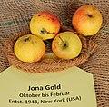 Apfel 080 Jona Gold (fcm).jpg